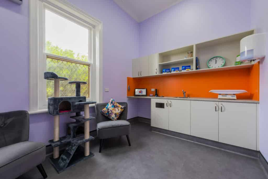 YP Vets fitout - vet clinic consult room
