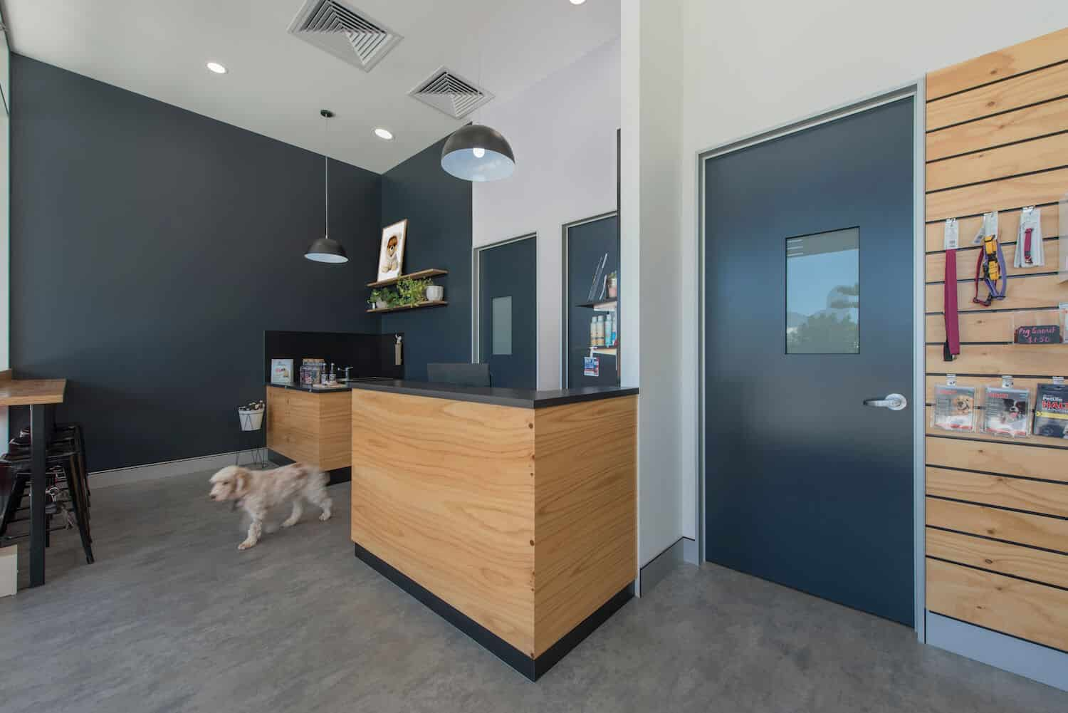 casuarina_vet_reception