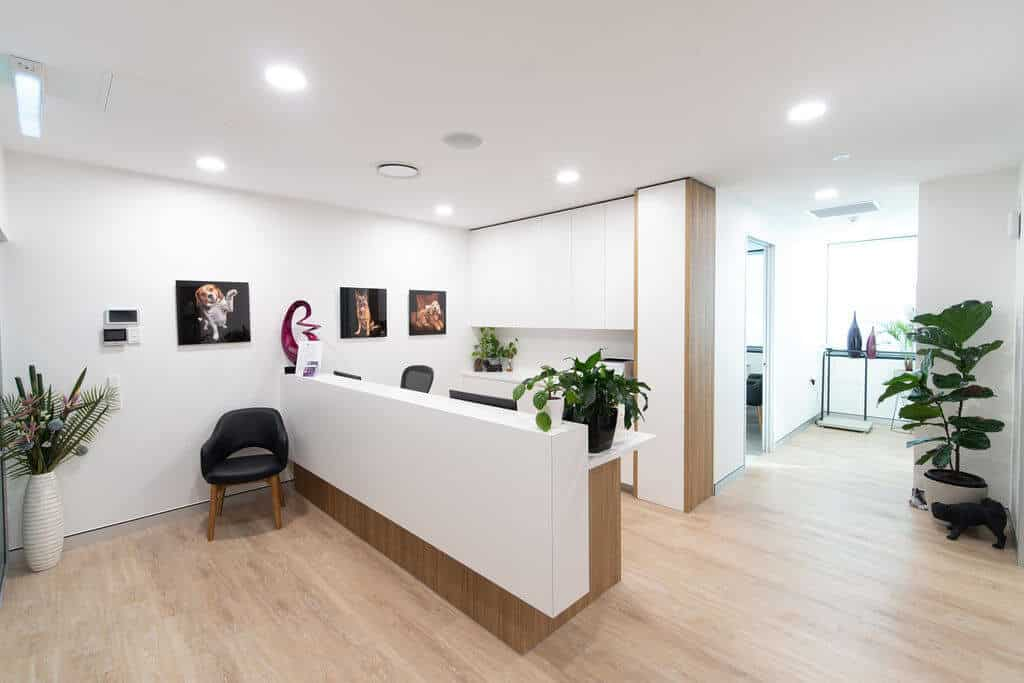 Miles Nephrology specialist fitout -  reception