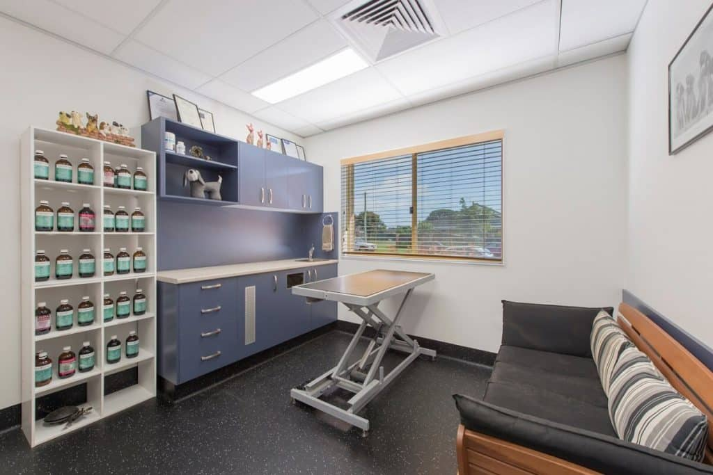 Racecourse Road Vet Clinic Consult Room refurbishment