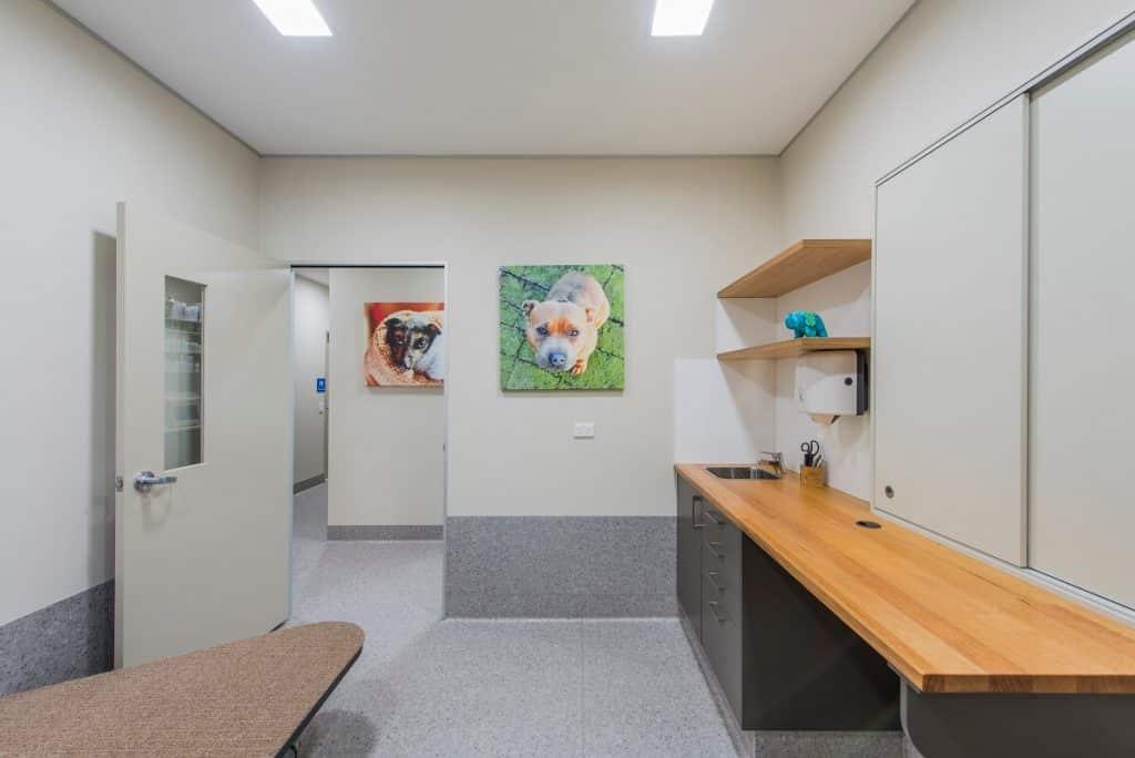 Vet practice vinyl flooring in consult room