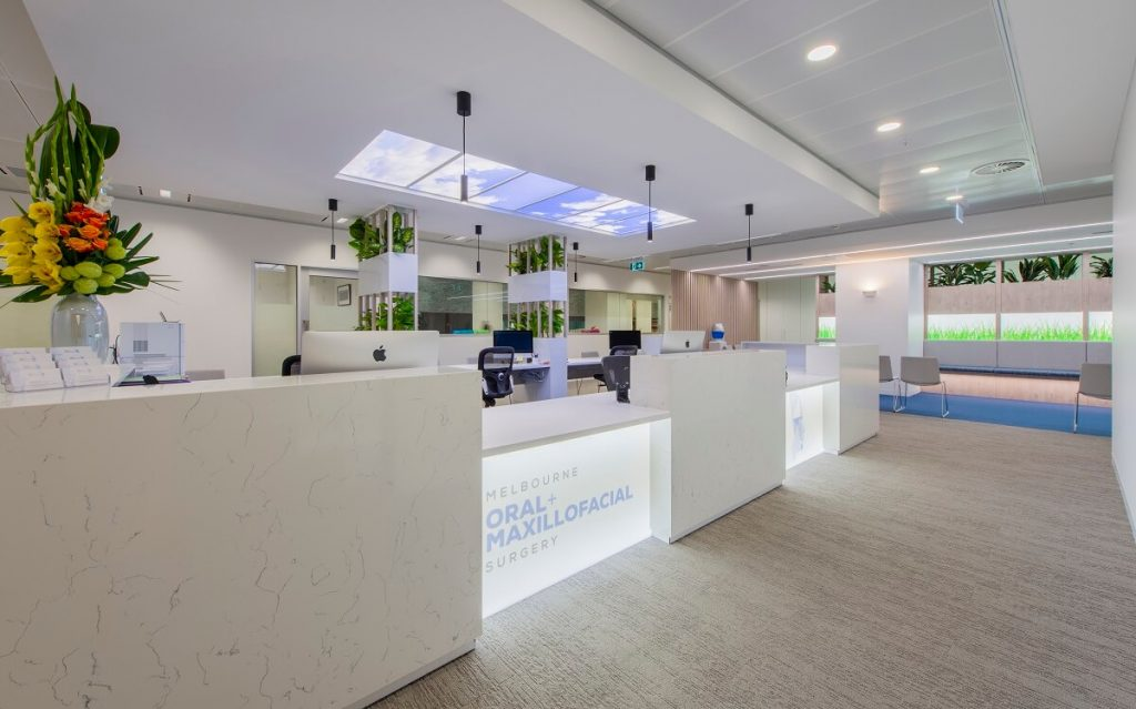 Dental fitout with natural elements