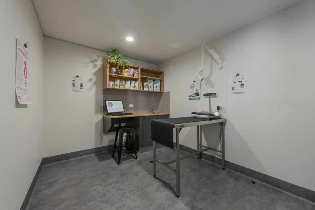Cat only consult room in cat friendly vet practice