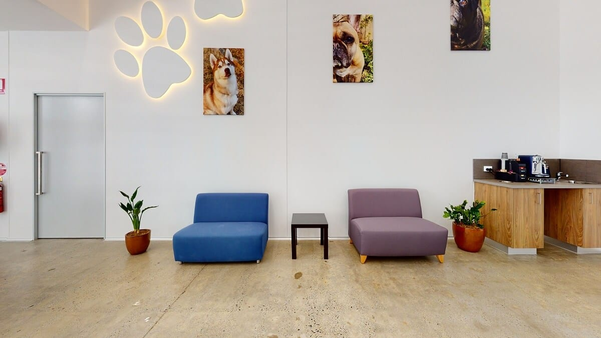 Delivering Great Customer Experience at Your Vet Clinic