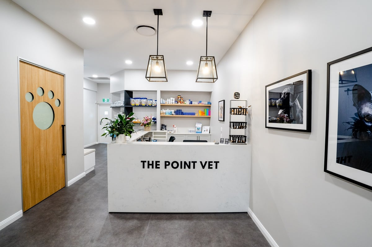 The Point Vet fitout - reception