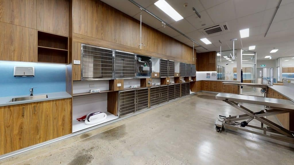 Veterinary Specialist Hospital Fitout - wall cubbies