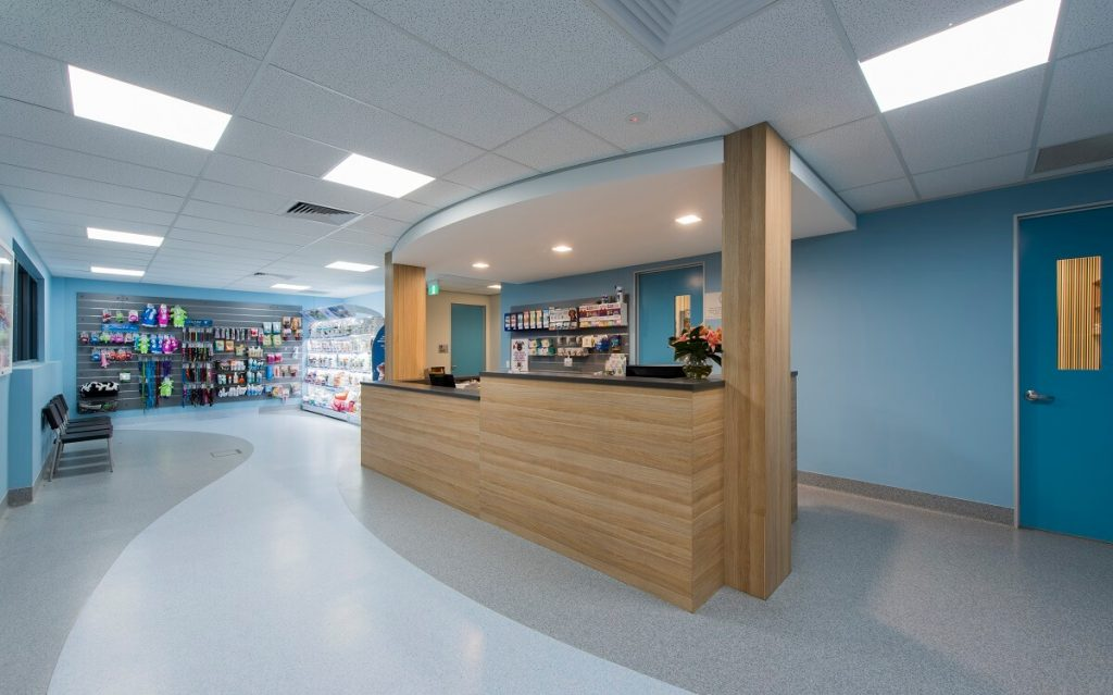 Asquith Vet practice design and fitout - reception area