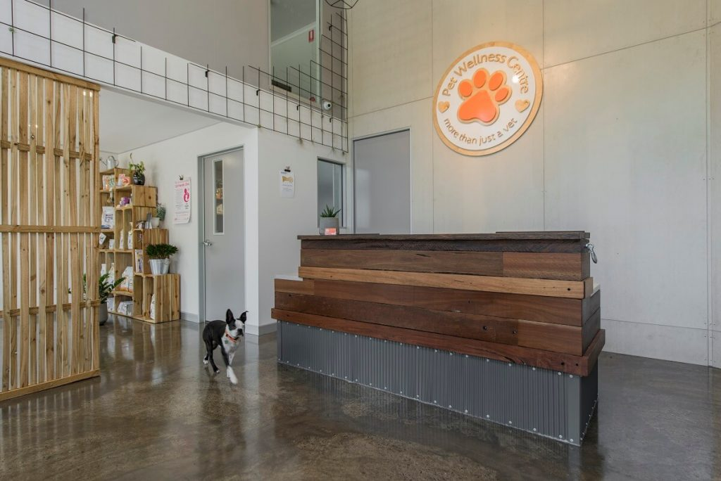 Pet Wellness vet practice fitout - reception