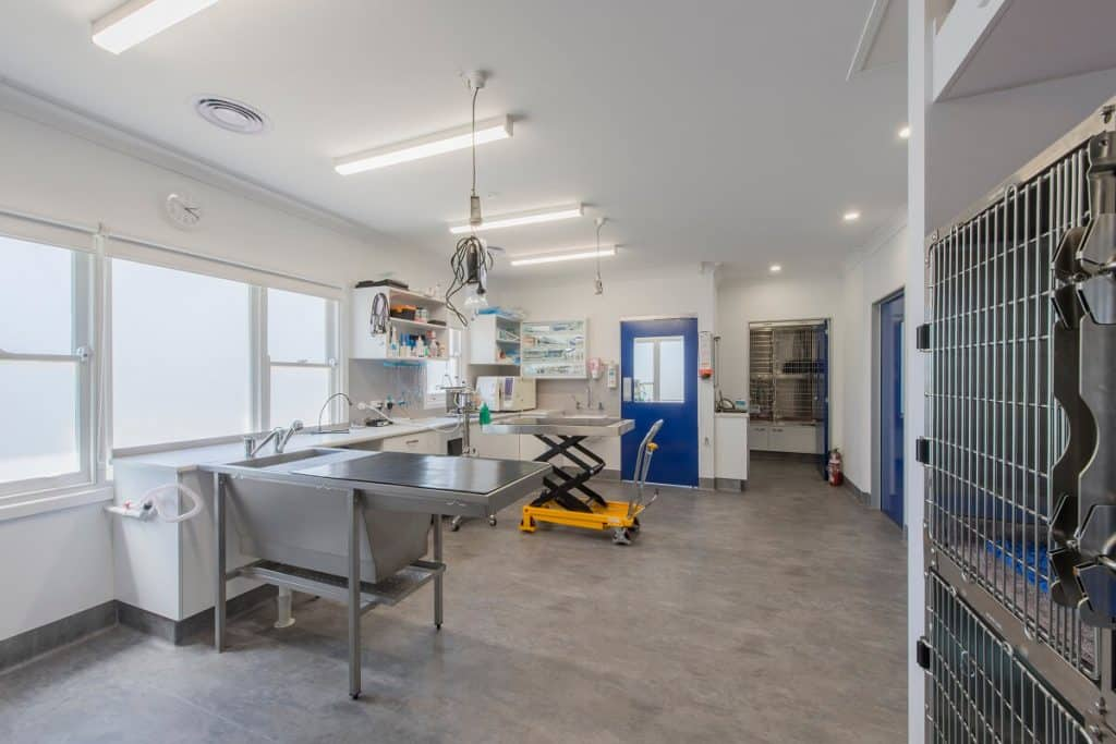 Spring Gully Vet practice fitout