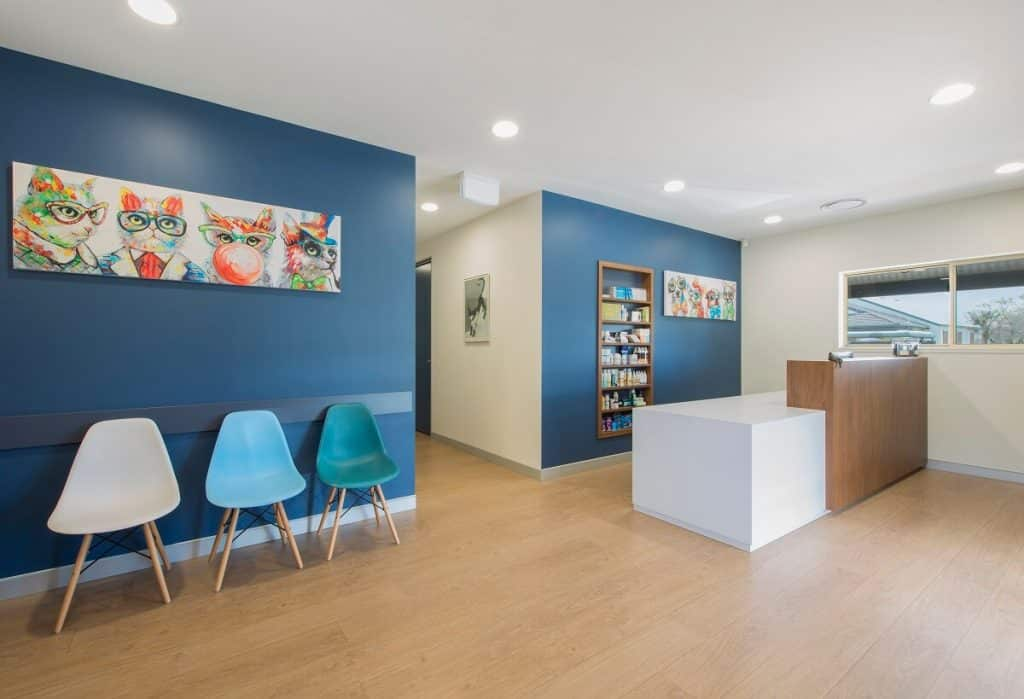 Healthcare practice with added personality through artwork and colour
