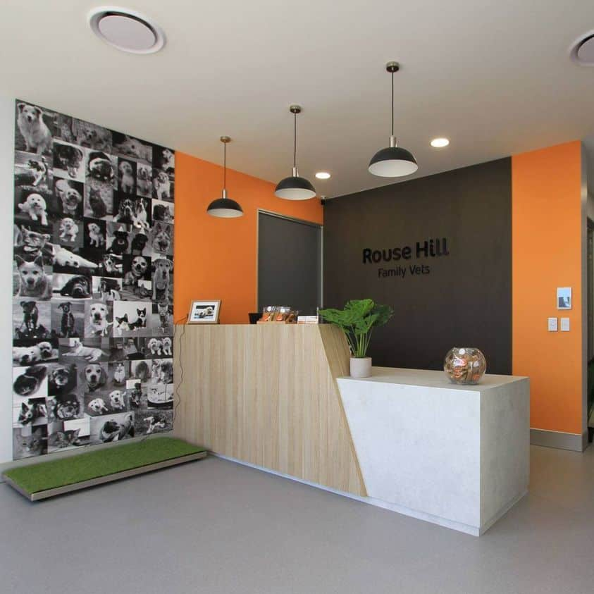 Fear free vet clinic design - Rouse Hill Family Vets