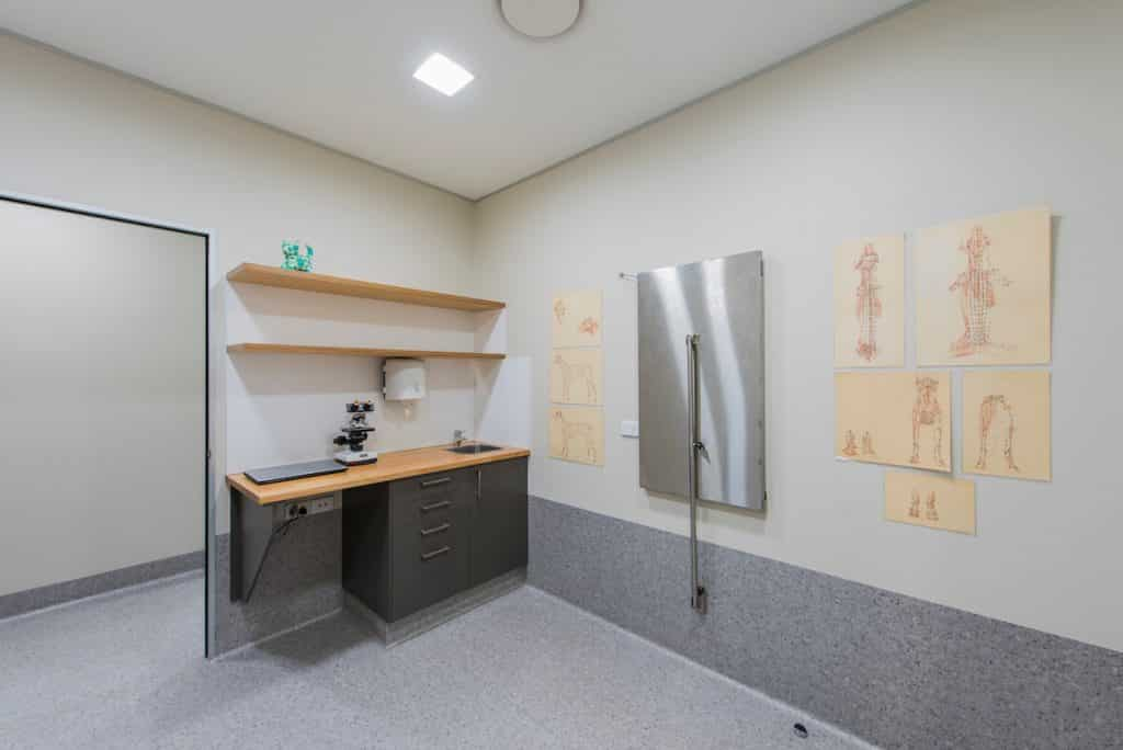 Vet practice consult room with fold-up table