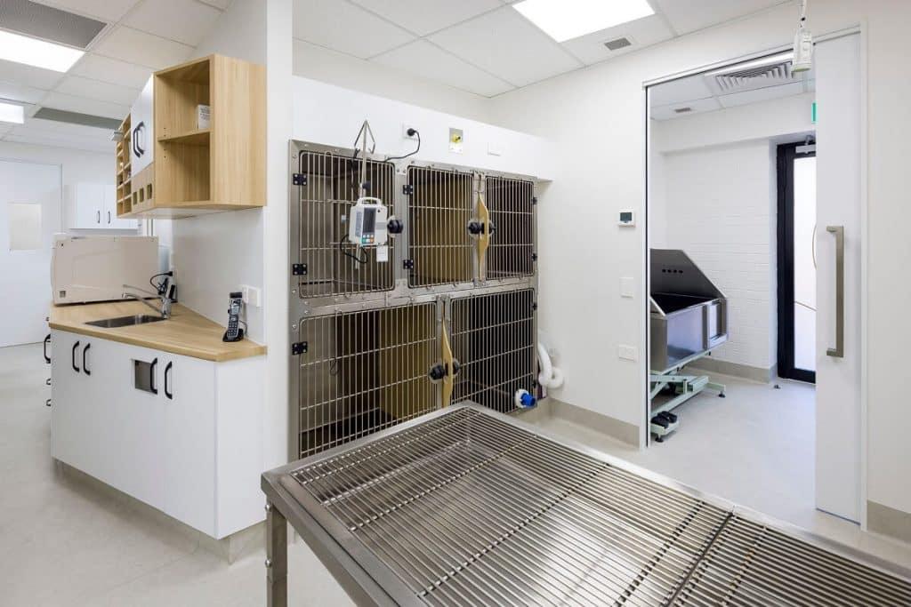 Vet clinic wards area